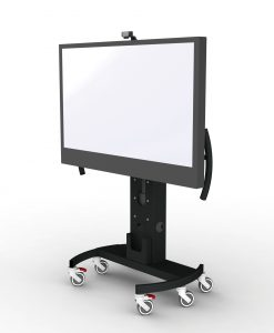 Screen Stands & Mounts